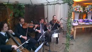 foto Quarteto de Cordas